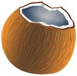 coconut cartoon inner nut